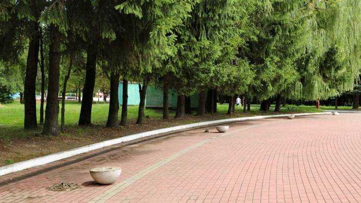 Мэрия Брянска объяснила отсутствие туалетов в парке возле Кургана