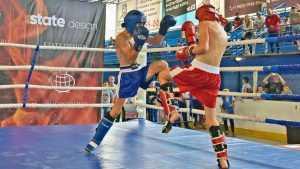 В Брянске начались соревнования по кикбоксингу «Кубок Белых волков»