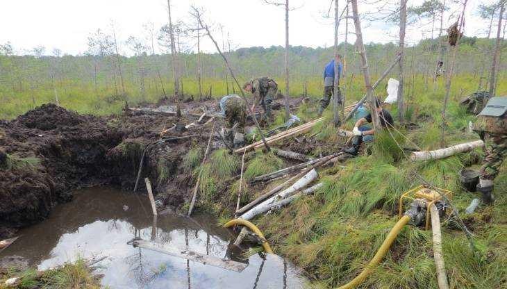 Под Новгородом обнаружили останки погибшего в 1943 году брянского лётчика