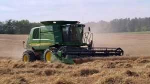 Максимова: Единый «налоговый патент» для ЛПХ поможет фермерам развивать хозяйства
