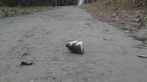 В Брасовском районе выбежавший на дорогу мальчик попал под иномарку
