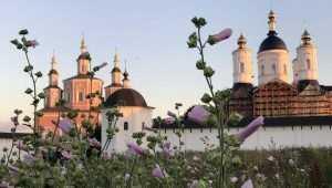 Патриарха Кирилла попросят освятить брянский Успенский собор