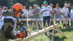 В Брянске из-за сражения лесорубов закрыли проезд на набережной