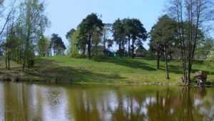 В посёлке Чайковичи супруги спасли тонувшего в озере мальчика