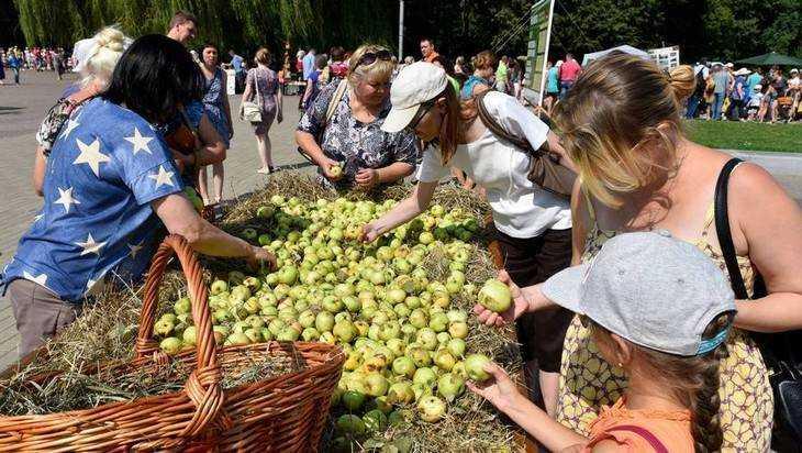 На брянском фестивале «Яблочный спас» покажут доброе кино