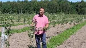 Сербские яблони прижились на брянской земле