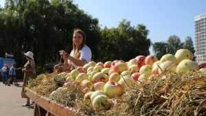 На Кургане Бессмертия в Брянске прошел солнечный фестиваль «Яблочный Спас»
