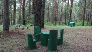 В Брянской области открыли кордон «Дубровское лесничество»