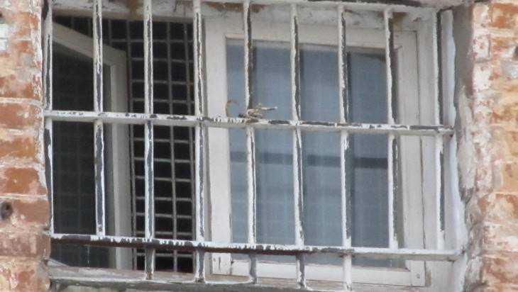 Суд Брянска продлил арест поклоннику украинского режима Бахолдину