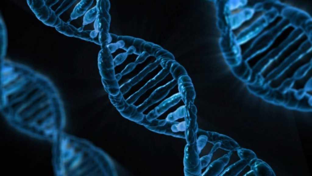 В «Сколково» создали дешевый тест на ДНК
