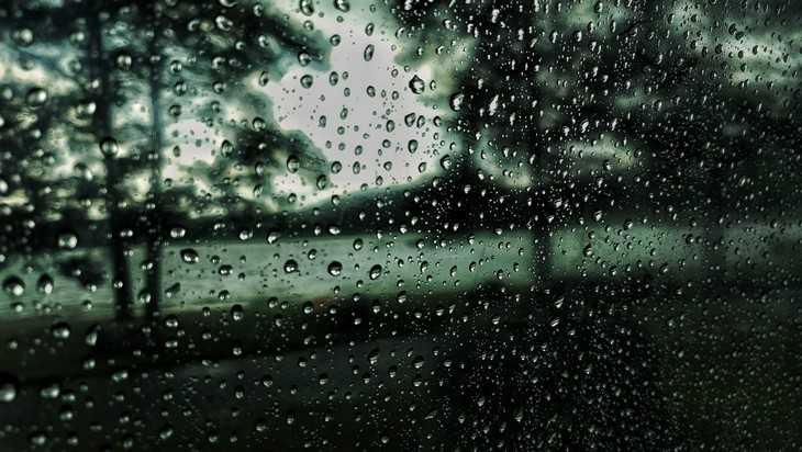Брянцев ждет холодная и дождливая неделя