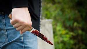 Дело о жестоком убийстве в Брянске дошло до суда