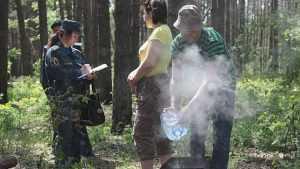 Брянские леса открыли для посещений
