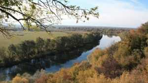 Брянский губернатор утвердил схему размещения охотничьих угодий