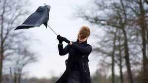 В пятницу Брянск могут накрыть сильный ветер и дождик