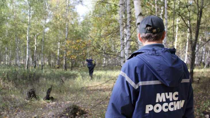 Под Брянском в лесу нашли заблудившуюся 78-летнюю пенсионерку