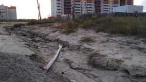 Брянцев предупредили о смертельной опасности на пустыре в Бежицком районе