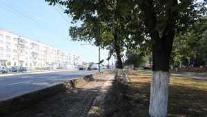 В Брянске восстановят разрушенный тротуар на Московском проспекте