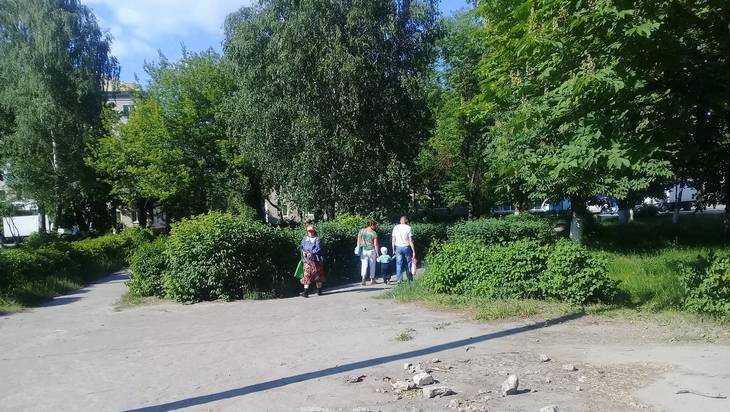 Жители Брянска попросили не уничтожать сквер ради детского сада