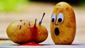 В Брянской области в августе рекордно подешевел картофель