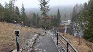 Жители Брянской области потратили на туристические путевки 591 миллион