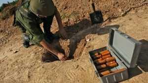 Брянские бойцы покажут свои навыки на лагерном сборе