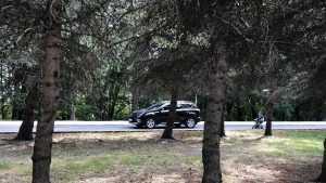 Водитель авто с «блатным» номером доказал брянской полиции, кто главнее