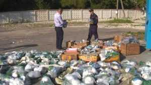 Брянские полицейские оставили браконьеров без сетей