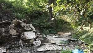В Брянске после варварских работ часть рощи «Соловьи» стала свалкой