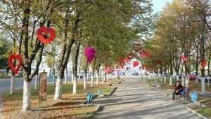 В Брянске сквер Игната Фокина украсили сердцами ко Дню города