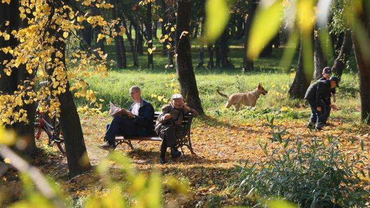 В четверг в Брянске сохранится теплая погода