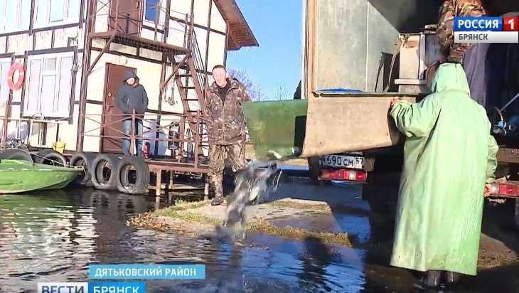 В озеро Бытоши Дятьковского района выпустили полчища мальков