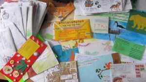 Дети написали письма в брянский заповедник бобру, ежику и дятлу