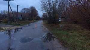 В Стародубском районе нашли труп велосипедистки