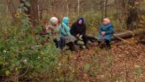 Брянцы возмутились оголенным трубопроводом в лесу