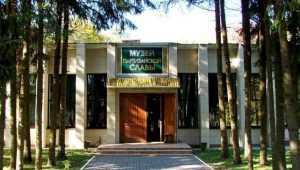 Брянский музей «Партизанская поляна» в 2019 году дополнят пристройкой