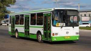 В Брянске троллейбусы 3 и 5 заменят пятым и 25-м автобусами