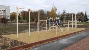 Спортплощадки построят в каждом районе Брянска