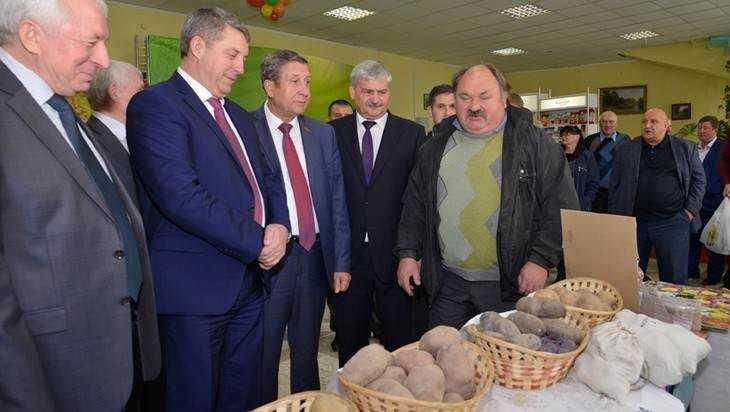 Брянщину признали главным картофельным донором
