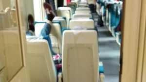 В поезде Брянск – Москва сфотографировали расслабляющегося шарикова