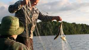 В Климове двое браконьеров ответят в суде за ловлю рыбы сетями