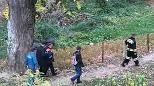 В Брянске посетителей парка «Соловьи» переполошило известие о снаряде