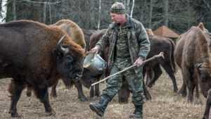 В заповеднике«Брянский лес» начали подкормку зверей и птиц