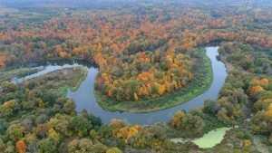 Фотограф Игорь Шпиленок показал осеннюю красоту брянского леса