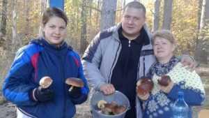 В брянских лесах из летней спячки вышла тьма боровиков