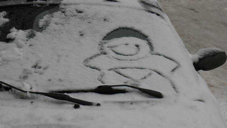 Синоптики рассказали, когда в Брянск придет первый снег