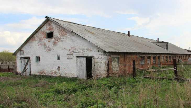 Жителя Клинцовского района осудят за коноплю на заброшенной ферме