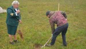 В Локте брянцы посадили рябиновую аллею в честь столетия комсомола