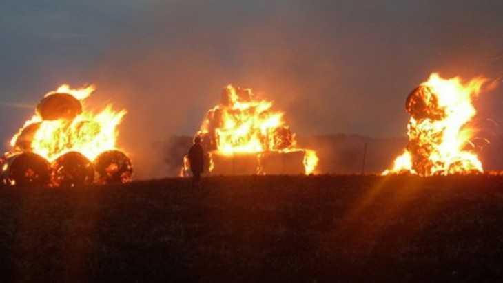Полторы тысячи тюков соломы спалил 20-летний житель Суземского района