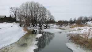 В Брянской области 7-градусный мороз сменится оттепелью